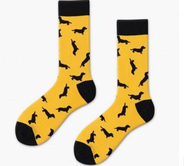 Ponožky - jazvečík